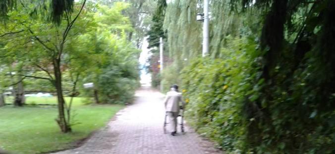 g.d.walking